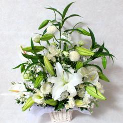花コラム・・優雅で凛とした気品のある、ユリの花